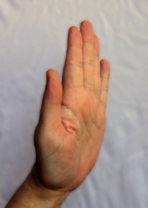 Hand sign 'Stop' (1a)