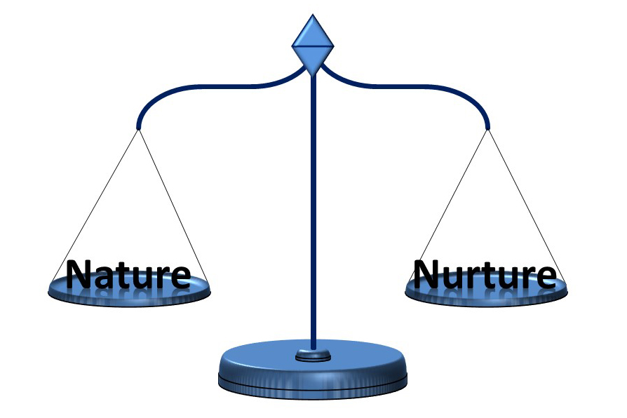 an analysis and a comparison of nature and nurture Nature vs nurture essays to raise a child is a difficult job however, to predict a child's behaviors and personalities, as he/she grows up, is an even more difficult.